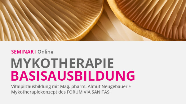 Online - Basisausbildung Mykotherapie
